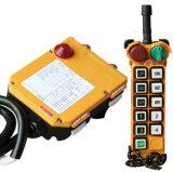 La gru Radio Remote di serie F24 gestisce