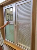조정가능한 UPVC와 조정 재배지 셔터 Windows (BHP-SCW02)