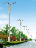 Luz de calle solar comprable del Ce los 5m los 6m 20W 30W LED