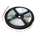 Uitstekende kwaliteit 2835 Good Price LED Rope Light 240LEDs IP20