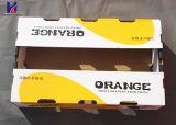 Heiß-Verkauf gute Frucht u. Veggie-Karton-gewölbte Verpackungs-verpackentellersegment-Karton-Kasten