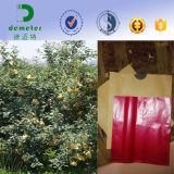 Sacchetto a gettare impermeabile ambientale del coperchio della carta da imballaggio della frutta