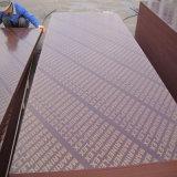 O Poplar da película de Brown/película do vidoeiro enfrentou a madeira compensada para o concreto