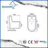 Siphonic monopièce conjuguent la toilette en céramique affleurante (ACT5153)
