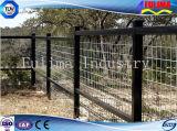 ASTM DIN 옥외에게 를 사용하는을%s 강철 난간 방호벽 (FLM-FN-005)