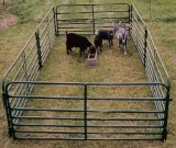 американские сверхмощные панели Corral скотин 6foot*12foot/панели Corral лошади
