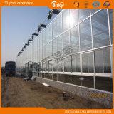 農業の植わる高いコストパフォーマンスガラスの温室