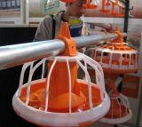 بلاستيك 14 شبك [برويلر شكن] مغذية حوض طبيعيّ