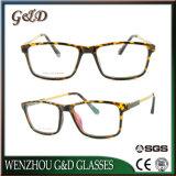 Het recentste Optische Frame van het Oogglas Eyewear van Ultem van het Ontwerp van de Manier Plastic met de Tempel van het Aluminium E023