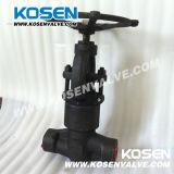 Выкованный нормальный вентиль уплотнения давления (PJ61Y-2500LB)