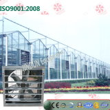 High Quality를 가진 푸시-풀 Greenhouse Exhaust Fan