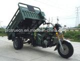 Nuevo Triciclo de la Rueda del Diseño Tres/triciclo del Cargo (TR-1)