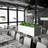 Uispair Modern Home Office Garden Flower Vase for Decoration
