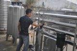 Equipo de la purificación del tratamiento de aguas de la ósmosis reversa del acero inoxidable