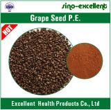 Естественный OPC выдержки 90% Seed&Skin виноградины