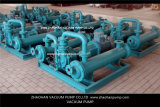 flüssiger Vakuumkompressor des Ring-2BE3320 mit CER Bescheinigung