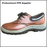 ローカットのスムーズな処置の革流行の安全靴