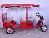 FM/Radio、ファンおよび後部カメラが付いている販売のインドの熱い人力車