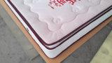 10 Zoll-Latex-Sprung-Matratze für eben verheiratete Leute