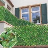 Lo schermo di segretezza di alta qualità pianta la barriera artificiale della rete fissa dell'EDERA del giardino