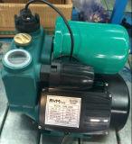 Elektrische heißes Wdm128-Wdm1500 und kaltes Wasser-Selbstumlaufpumpe