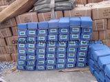 Chiodi d'acciaio di Gavanized dei prodotti dei chiodi Q195 del tetto con migliore qualità ed il prezzo competitivo