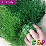 عشب طبيعيّة خضراء [وربل] بلاستيكيّة لأنّ كرة قدم