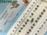 Paréntesis ortodónticas certificadas ISO/Ce/FDA de Roth Angela de la fabricación de Denrum mini
