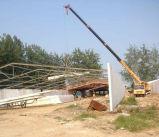プレハブの軽い構造の鋼鉄家禽のニワトリ小屋か農場