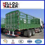 30t schwerer LKW-Ladung-niedriger Preis des schweren LKW-6X4 für Verkauf