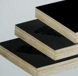 Schwarzes/Brown-Film stellten preiswerte zweite Handfurnierholz-Blätter gegenüber