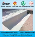 HDPEシートからなされる地階の防水の膜