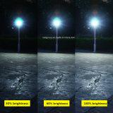 Indicatori luminosi di inondazione solari della nuova PANNOCCHIA LED con il LED luminoso eccellente