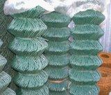 50X50mm PVC上塗を施してあるチェーン・リンクの金網のダイヤモンドの網