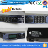 2016 heißes Selling 2channel Sound Digital Amplifier Fp14000 2400W