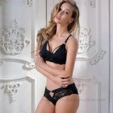 Nuevo diseño atractivo empuja hacia arriba el sujetador de las señoras panty
