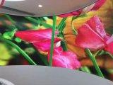 Mur polychrome d'intérieur de P6 DEL