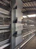 Горячим сертификат гальванизированный сбыванием цыпленка клетки ISO9001