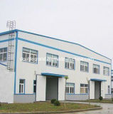 costruzione professionale della costruzione della pagina d'acciaio di fabbricazione/del gruppo di lavoro fabbricazione di Professinal