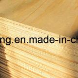 Madera contrachapada del pino para el embalaje, la construcción y los muebles