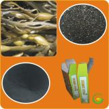 100 % soluble en agua Seaweed Extract, fertilizante orgánico