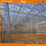 Vegetable Planting를 위한 Yield 높은 다중 Span PC Greenhouse