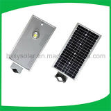 L'usine 6W-120W a intégré tous dans une lumière solaire de jardin du réverbère DEL