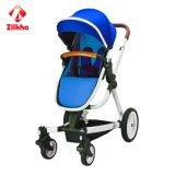 Passeggiatore del bambino con il blocco per grafici e la pressatura calda