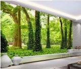 Umweltfreundliche populäre selbstklebende Baum- des Waldeslandschaftswand-Innenwandbilder