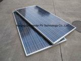 poli comitato solare 240W diretto con l'alta qualità