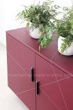 Cabinet moderne de rangement de livres en cuir de haute qualité (S603)