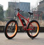 고속 뚱뚱한 타이어 전기 자전거 (RSEB-508)