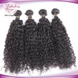 Häutchen-intakte Menschenhaar-lockige Jungfrau-unverarbeitetes brasilianisches Haar