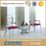 El vector y la silla de lujo de cena del diseño fijaron para la venta